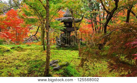 Eikando Temple, Shrine In Autumn Garden, Kyoto