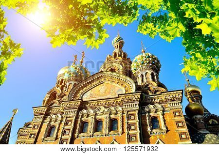 Architectural landscape - cathedral of Our Saviour on Spilled Blood in St.Petersburg Russia framed by green leaves with sunlight breaking through them.