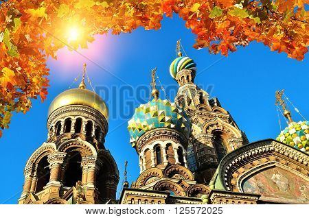 Closeup view of Our Saviour on Spilled Blood cathedral in Saint-Petersburg Russia framed by yellowed maple leaves. Autumn architectural landscape