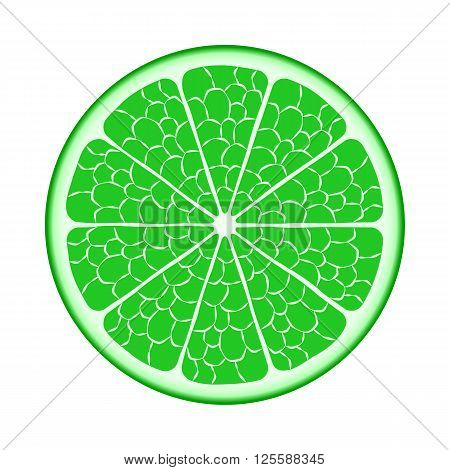 Fruit lime in the slit closeup. Vector EPS10