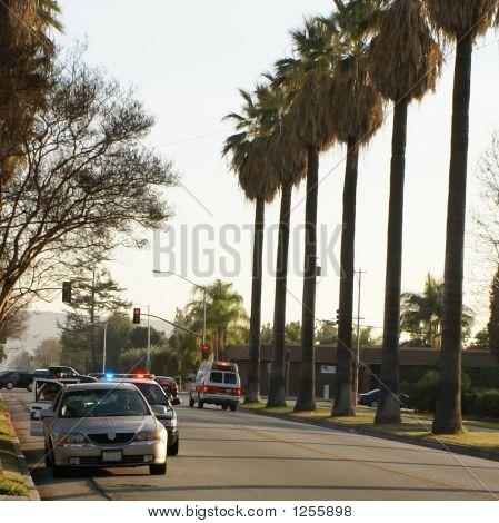 Urban Traffic Citation Crime Scene