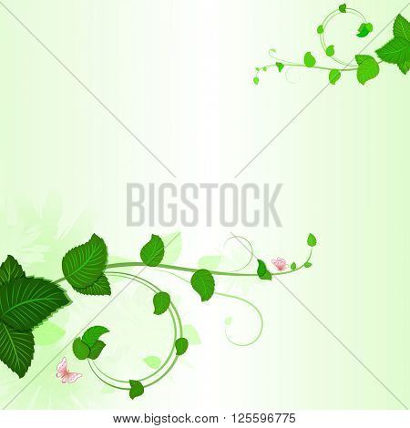 Green branches with leaves spring background with copy space.