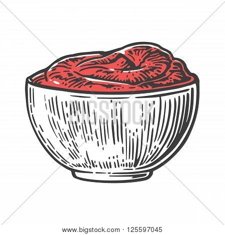 Tomato sause plate. Vector engraved illustration isolated on white background.