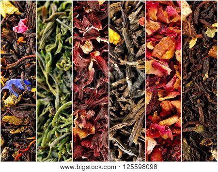 Assortment of dry tea close-up