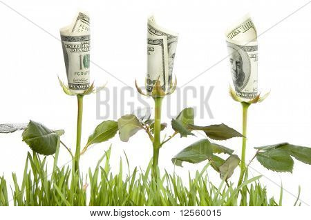 Financial growth.Conceptual image.