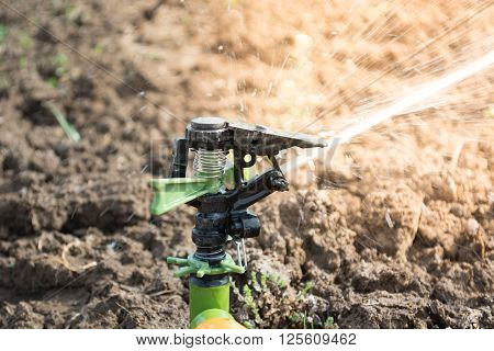 Closeup Of Sprinkler