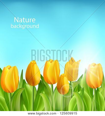 Illustration Nature Floral Background with Tulips Flowers and Blue Sky, Springtime, Environment, Beautiful Landscape - Vector