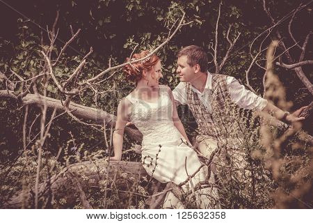Happy Couple Is Sitting On The Branch Of Old Tree On The Rural Background.