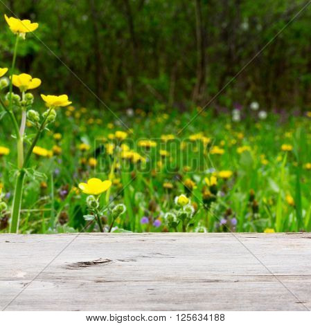 empty wooden board on a background of meadows with flowering herbs. Selective focus shallow depth of field. square photo. for product display montage