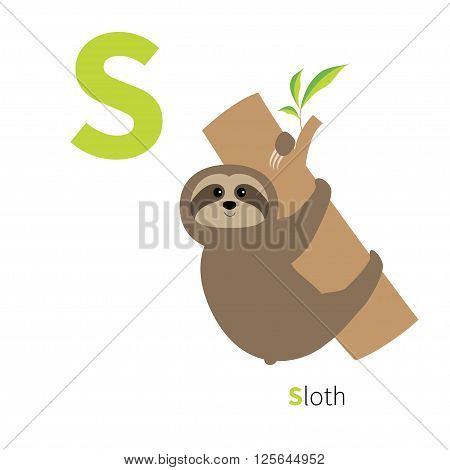 Letter S Sloth on tree Zoo alphabet. English abc with animals Education cards for kids Isolated White background Flat design Vector illustration