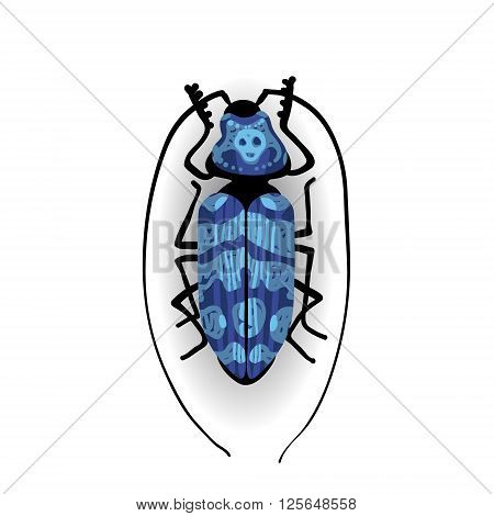 Big Blue Bug With Long Moustaches.