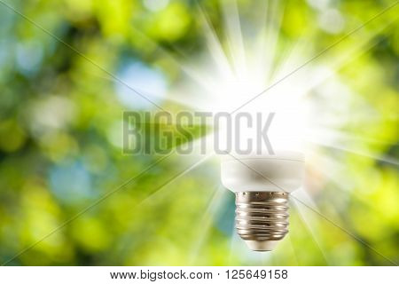 lamp image from which emanate rays of light on a green background