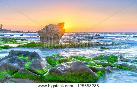 Sunrise ancient fossil reef as radiating star rounded up right edge large rock like shining pearl release, below farm yard green moss reflecting sunlight blue sky beautiful pink to welcome new day.
