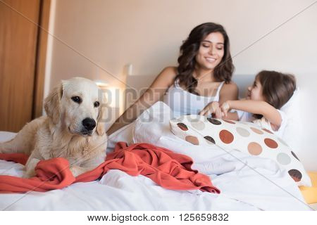 Family With Dog In The Bed