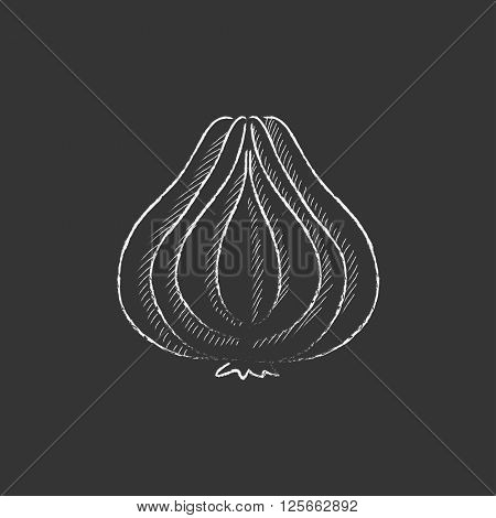 Garlic. Drawn in chalk icon.