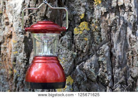 camp lantern on cortex tree background