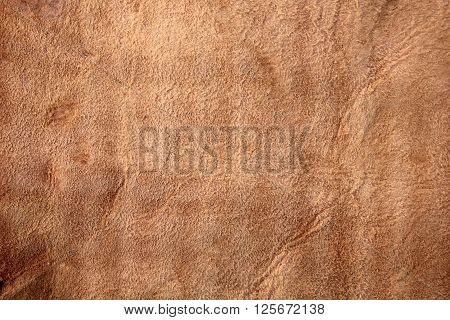 Brown wrinkled suede leather of an animal.