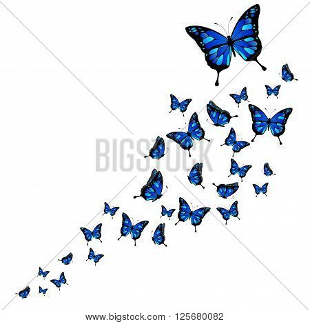 Flock of abstract butterflies on white background - vector illustration