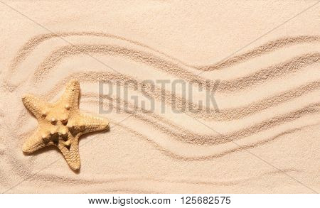 Starfish On Sand With Marks Of Waves