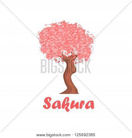 Sakura Cartoon Style Flat Vector Illustration On White Background With Text