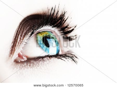 Beautiful Eye isolated on white