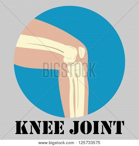 Human knee joint emblem medicine clinic symbol design joints diagnostics center flat design logo vector