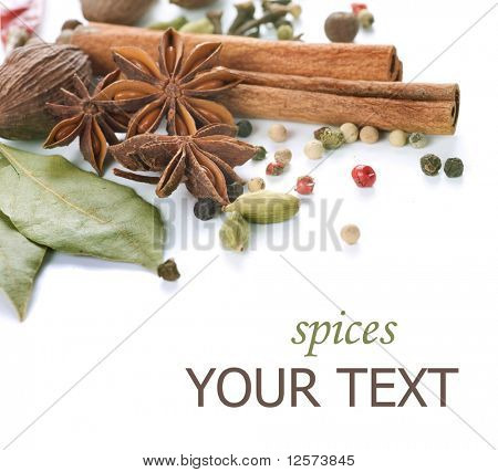 Spices Border.Isolated on white