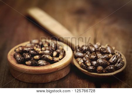 Castor beans in a wooden spoon and bowl on wooden surface