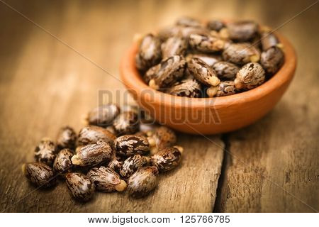Castor beans in bowl on wooden surface