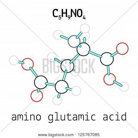 C5H9NO4 glutamic amino acid 3d molecule isolated on white