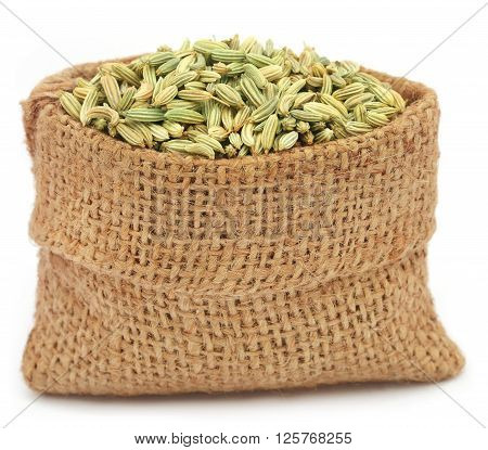 Fennel seeds in a sack over white background