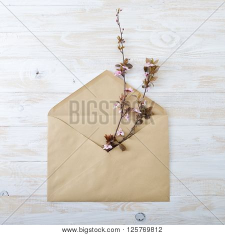 Blooming cherry branches. Envelope with spring flowers over rough obsolete wooden background. Springtime design concept