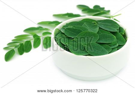 Edible moringa leaves in a white bowl
