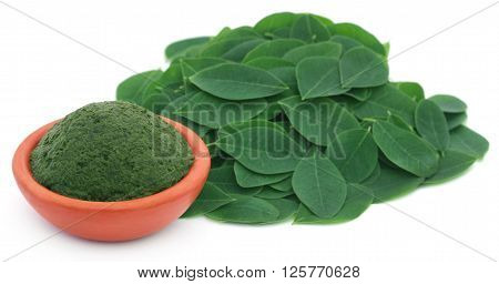 Mashed Moringa leaves in a pottery over white background
