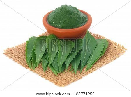 Fresh and mashed medicinal neem leaves over white background