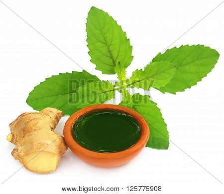 Ayurvedic combination of holy basil and ginger overw white background