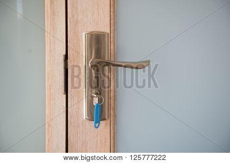 Glass door and handle with door key