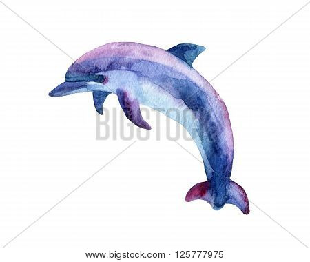 Jumping blue dolphin isolated on white background, watercolor painted illustration.