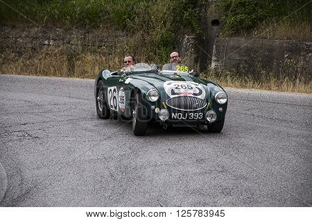PESARO, ITALY - MAY 15: AUSTIN HEALEY 100 S 1953 on an old racing car in rally Mille Miglia 2015 the famous italian historical race (1927-1957) on May 15 2015
