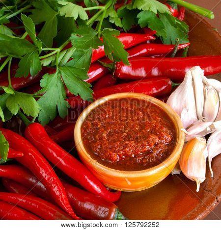 Raw hot georgian sause adjika and ingredients ** Note: Visible grain at 100%, best at smaller sizes