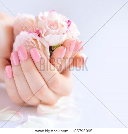 Hands Of A Woman With Pink Manicure On Nails And Roses Against White Background