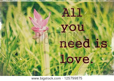 All you need is love on blurred background with vintage filter