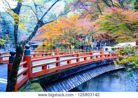 Kyoto, Japan - Nov 16, 2013: A Pavilion At Jingo-ji, Japan. Jingo-ji, Japan Is One Of The Closest Na