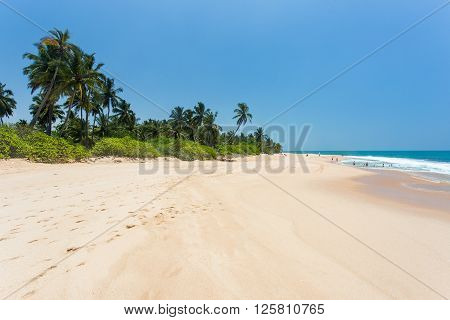 Sandy beach with palm trees on the ocean with bathers people. Sri Lanka