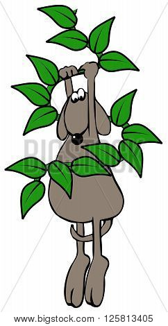 Illustration of a brown dog looking down while hanging on to a vine with big leaves.