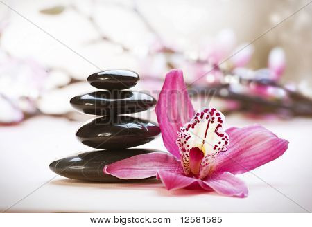 Spa Stones and orchid flower