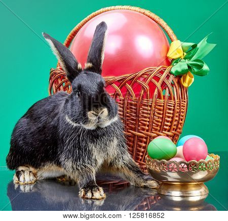 Fur rabbit sitting near wicker basket and a vase with Easter eggs