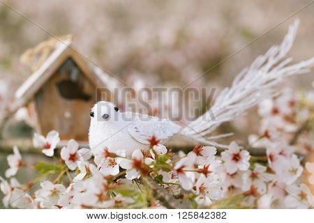 Little bird and Birdhouse in Spring with blossom cherry flower sakura