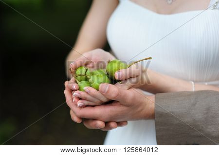 Full handful of pears. Couple a man and a woman holding a handful of green pears in hands. Man in suit girl in white wedding dress. Wedding day. Blurred grass in the background.