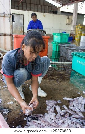 PHUKET, THAILAND - JULY 30, 2005 : 